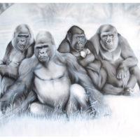gorillas-zoo-2015