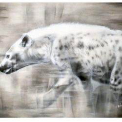 hyena-mara-2015