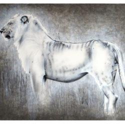 lion-mara-2015