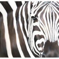 zebra-face-mara-2015