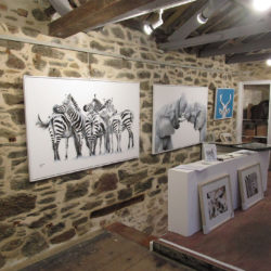 Ausstellung in St. Ives, England