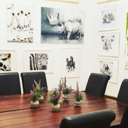 Ausstellung-auf-der-Veltheimsburg-1