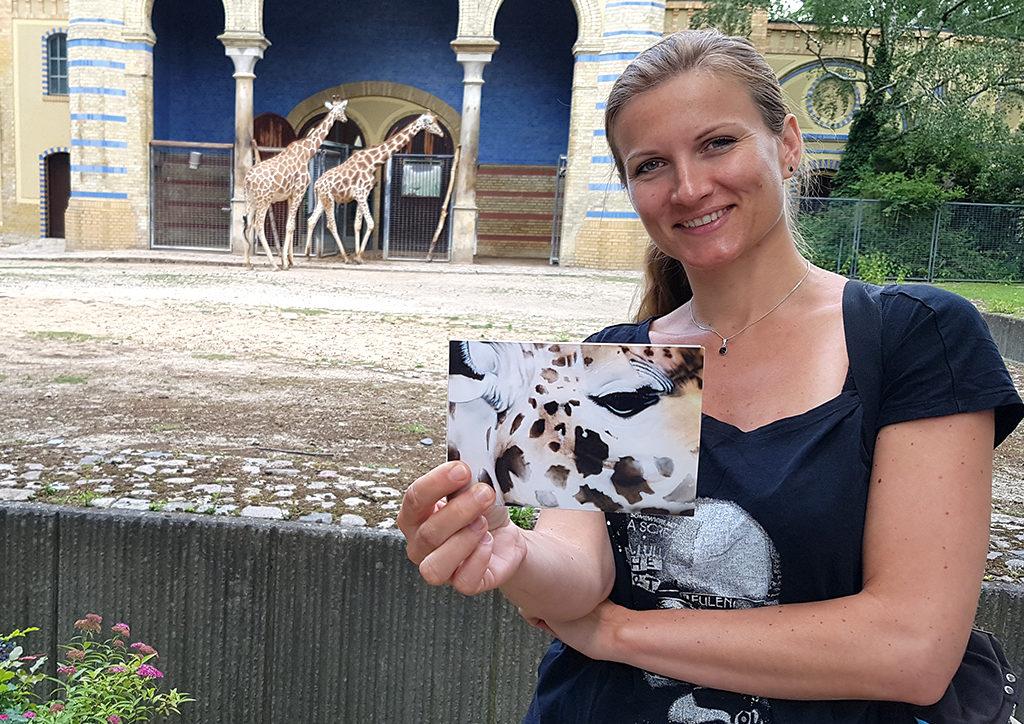 INSTA-Souvenirshop-Zoo-1-